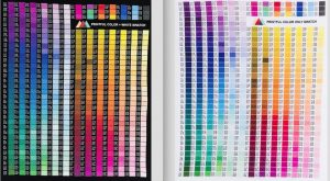 Printful Color Swatch Example