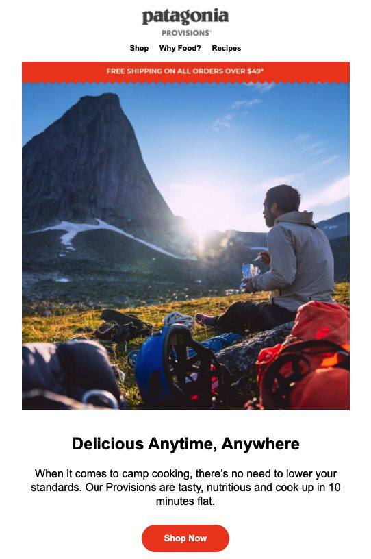 Patagonia email campaign