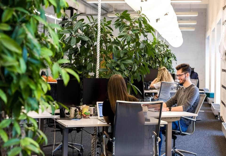 Sustainable office space
